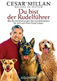Du bist der Rudelführer: Wie Sie die Erfahrungen des Hundeflüsterers für sich und Ihren Hund nutzen