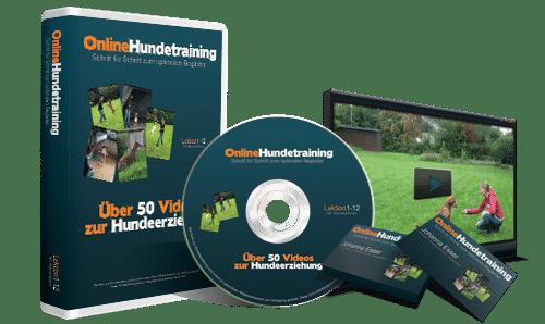 Über 50 Videos zur Hundeerziehung
